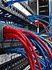 network3.jpg
