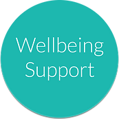wellbeing support button.png
