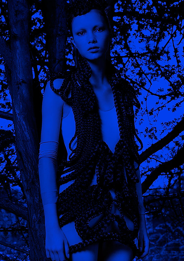 woods4_blue.jpg