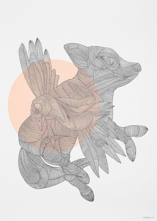 fox_bird_big.jpg