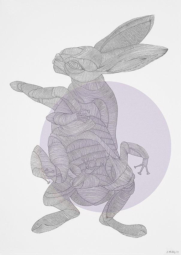 rabbit_frog_big.jpg