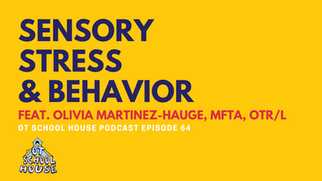 Episode 64 - Sensory, Stress, & Behavior