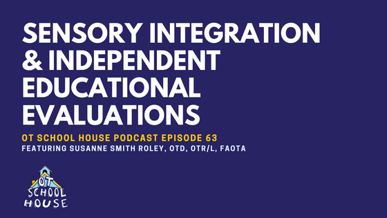 OTSH: 63 - Sensory Integration & Independent Educational Evaluations with Susanne Smith Roley, OTD