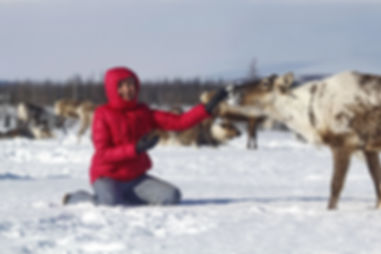 Туры к кочевникам Ямала