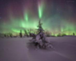 тур на полярный урал северное сияние фотоохота на Ямале