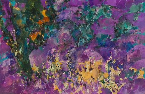 Lavender Fields: France
