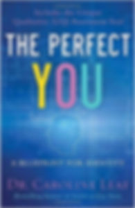 The Perfect You.jpg