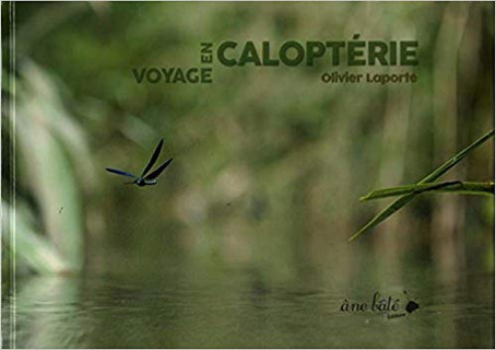 Voyage en Caloptérie - Olivier Laporte