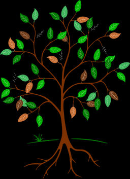 tree-684764_960_720.jpg