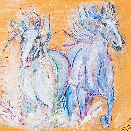 WILD HORSES ORANGE