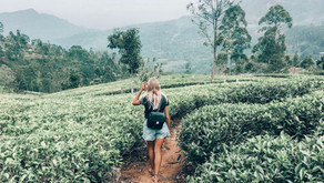 Backpacking in Sri Lanka: Tips on how to visit Sri Lanka without spending more than $50/a day