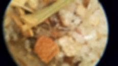 Customer Photo Microscope .jpg
