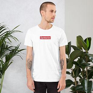 unisex-premium-t-shirt-white-front-60794