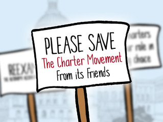 Please Save The Charter Movement From its Friends