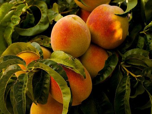 Natural Peach Flavor