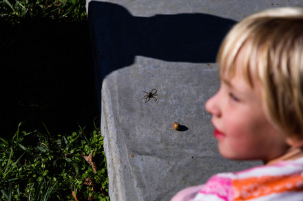 Eleanor sits in fascination at a large spider crawling around one of their father's sculptures while her mother, Coral, watches over.