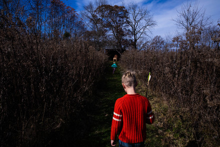 Abner Wedel uses an arrow as a walking stalk while following his sister, Eleanor, to one of their father's sculptures along the many acres of trails that lie beyond their home in Albany, Ohio.