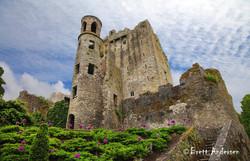 Blarney Castle - 7436-J - Web