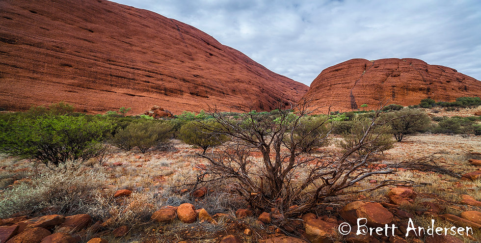 Kata Tjuṯa, also known as the Olgas, Northern Territory