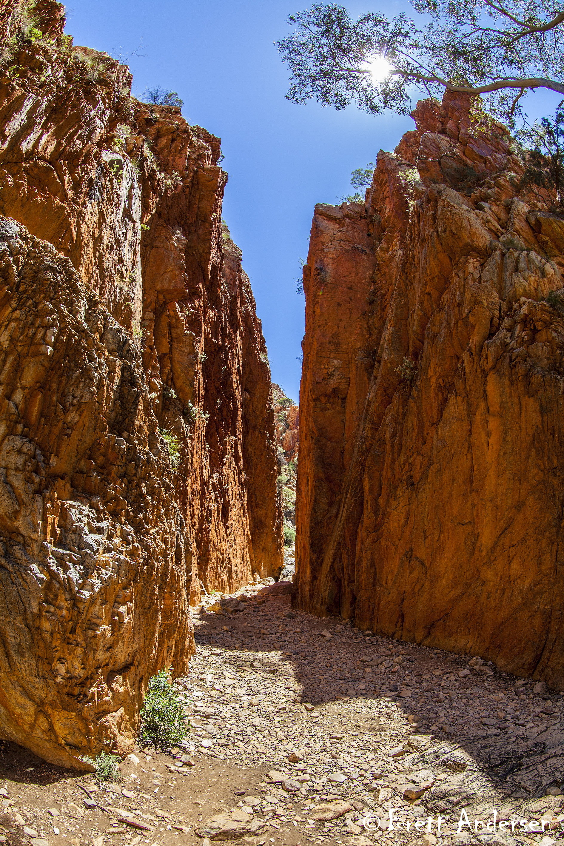 Standley Chasm_4825 - Web