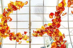 Chihuly - 2 copy