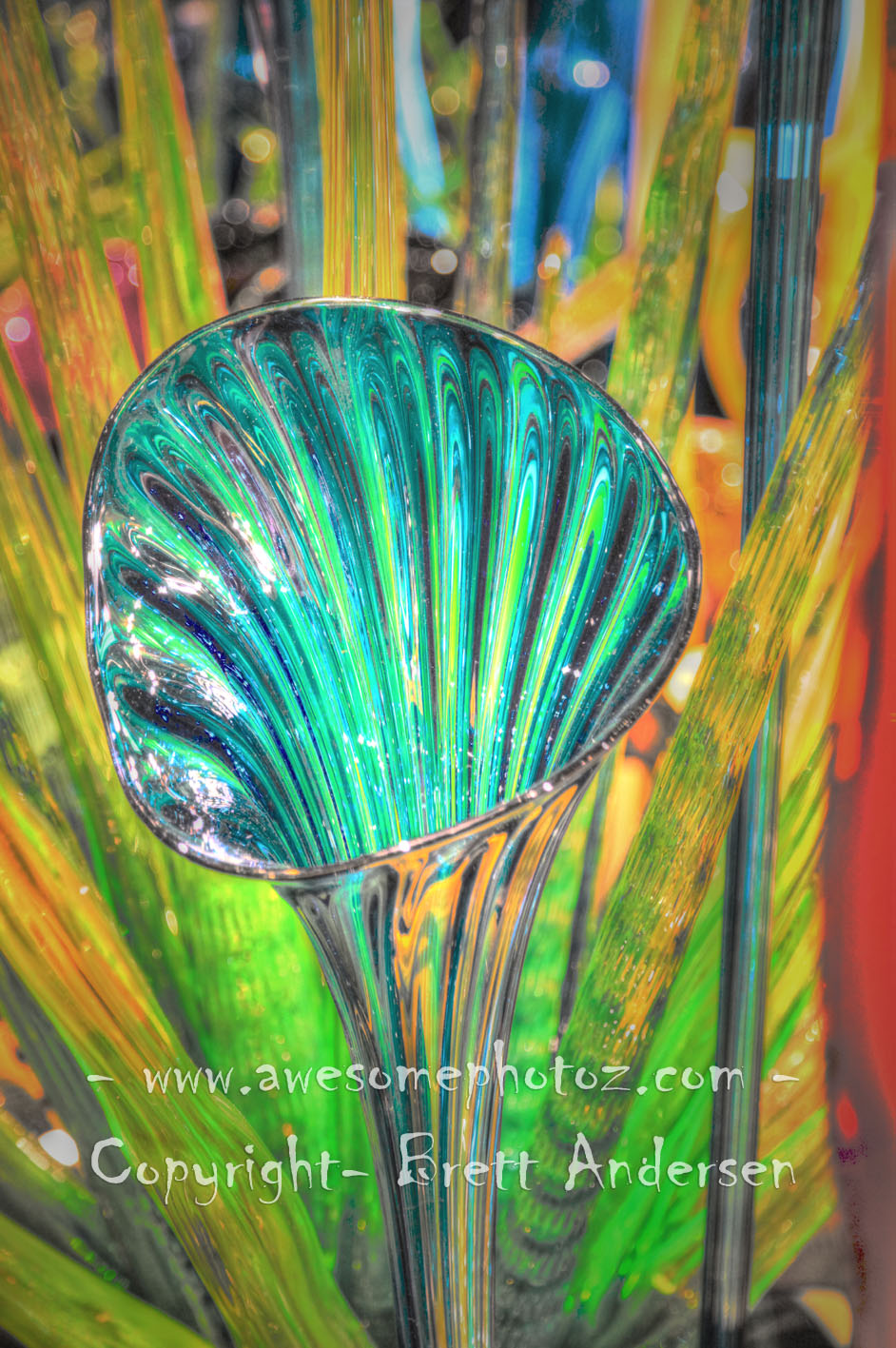 Chihuly - 3 copy