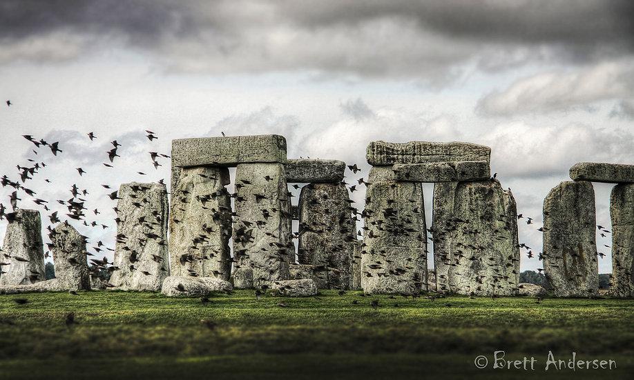 Birds at Stonehenge, UK