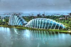 41 - Singapore 4