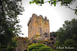 Blarney Castle_7411-9-16 - J - Web