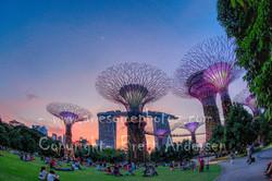 38 - Singapore 2