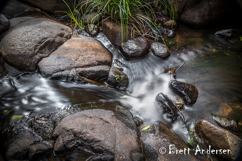 Cedar Creek, Samford, Queensland.