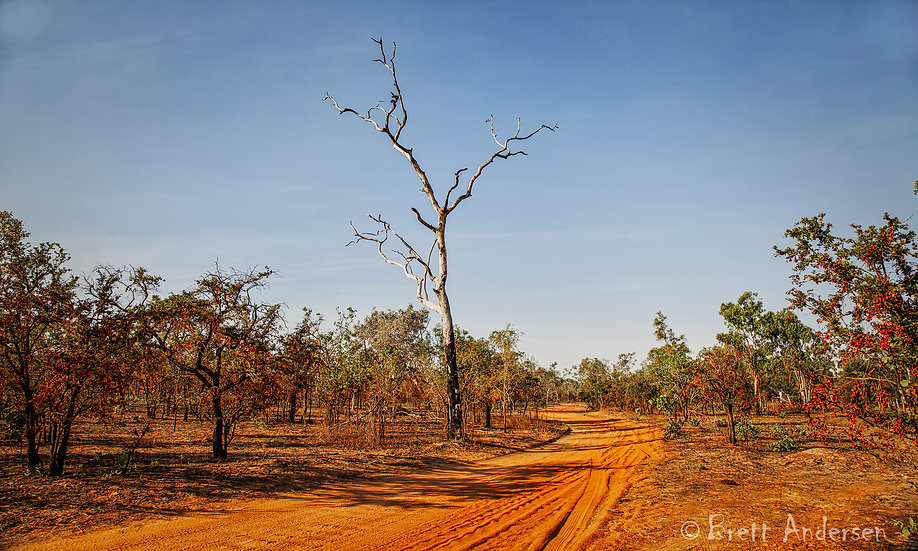 Outback Road, Northern Territory, Australia.