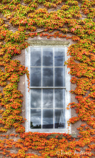 Window and Wall in Coleraine, County Londonderry, Northern Ireland.