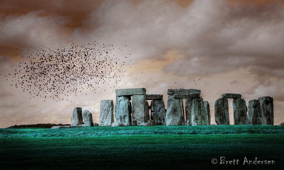Flock of Birds at Stonehenge, UK