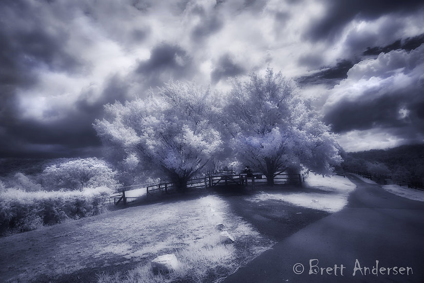 Infrared Image - Samford, Queensland