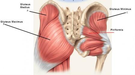 Ostéopathe spécialiste de la hanche