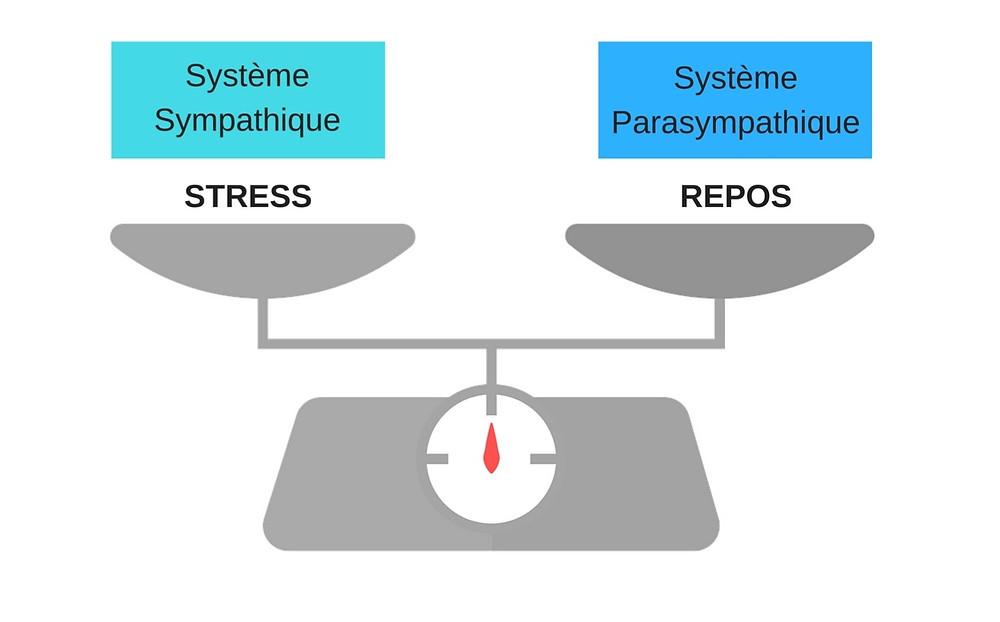 Stress et gestion en ostéopathie