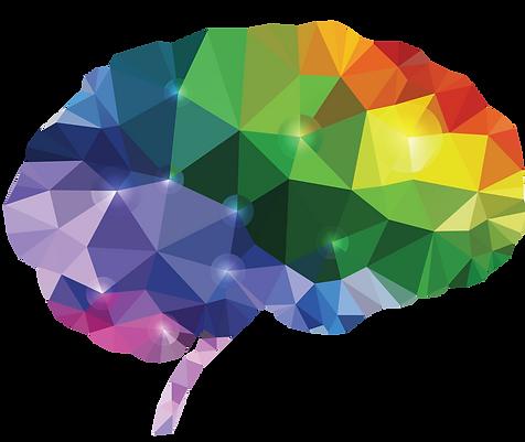 16-NEURO-05931-Brain.png