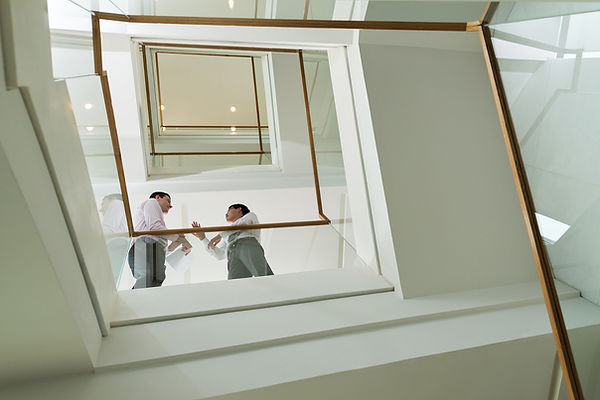 Бизнесмены по Лестнице