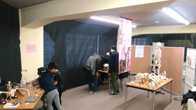 Theme-Ex 収蔵コレクション展