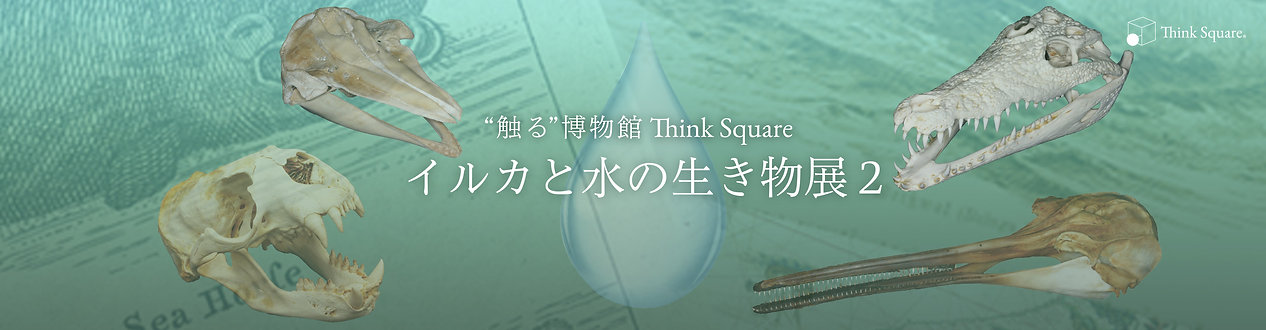 ThinkSquare‗D&AL2.jpg