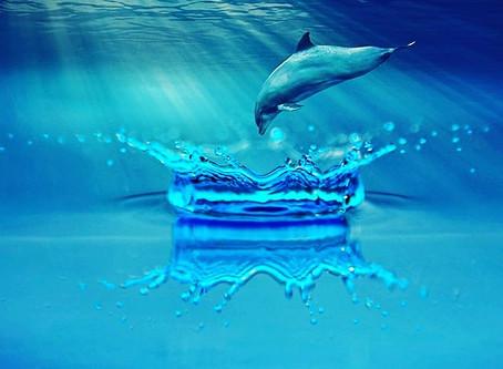 """The Heart is Ocean of Dreams"" song"