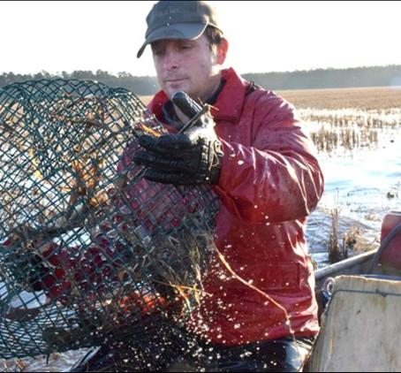 The Crawfish Farmers