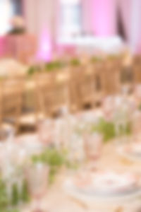 DinnerReception-AshleighBingPhotography-