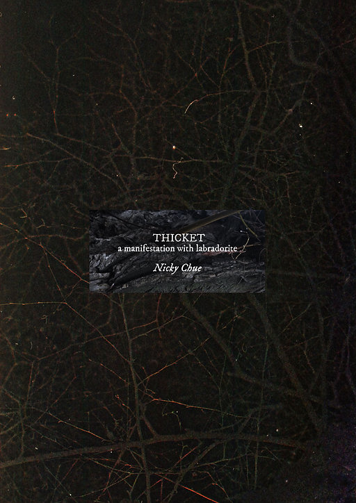 thicket1.jpg