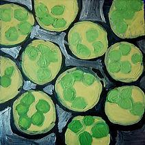 port student Algae Cells.jpg