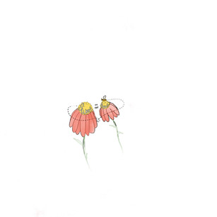 illustration,courtney jette,flowers,gard