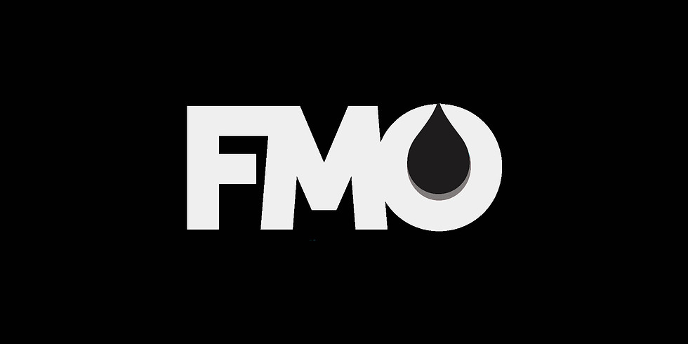 FMO Panel Discussion- Lending An Ear To Ignite Change