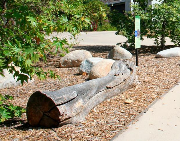 Natural Log Seat