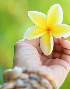 hawaii-2042053_960_720.jpg
